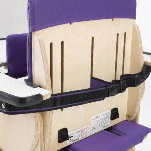 rear tray retaining strap